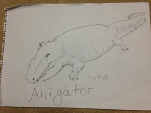 draw-an-alligator