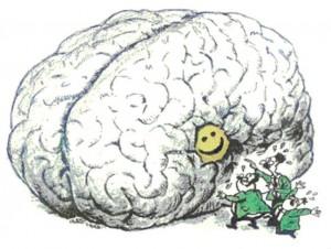 brain-on-laughter-toon